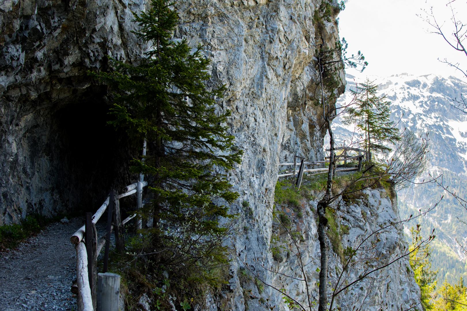 Tunnel auf der Wanderung zum Zwölferkopf