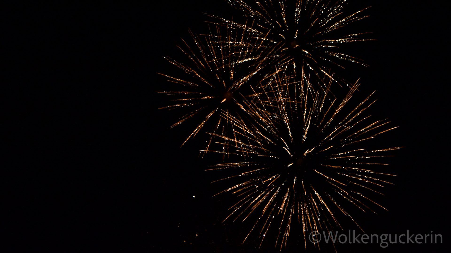 Ein goldgelbes Feuerwerk am schwarzen Nachthimmel